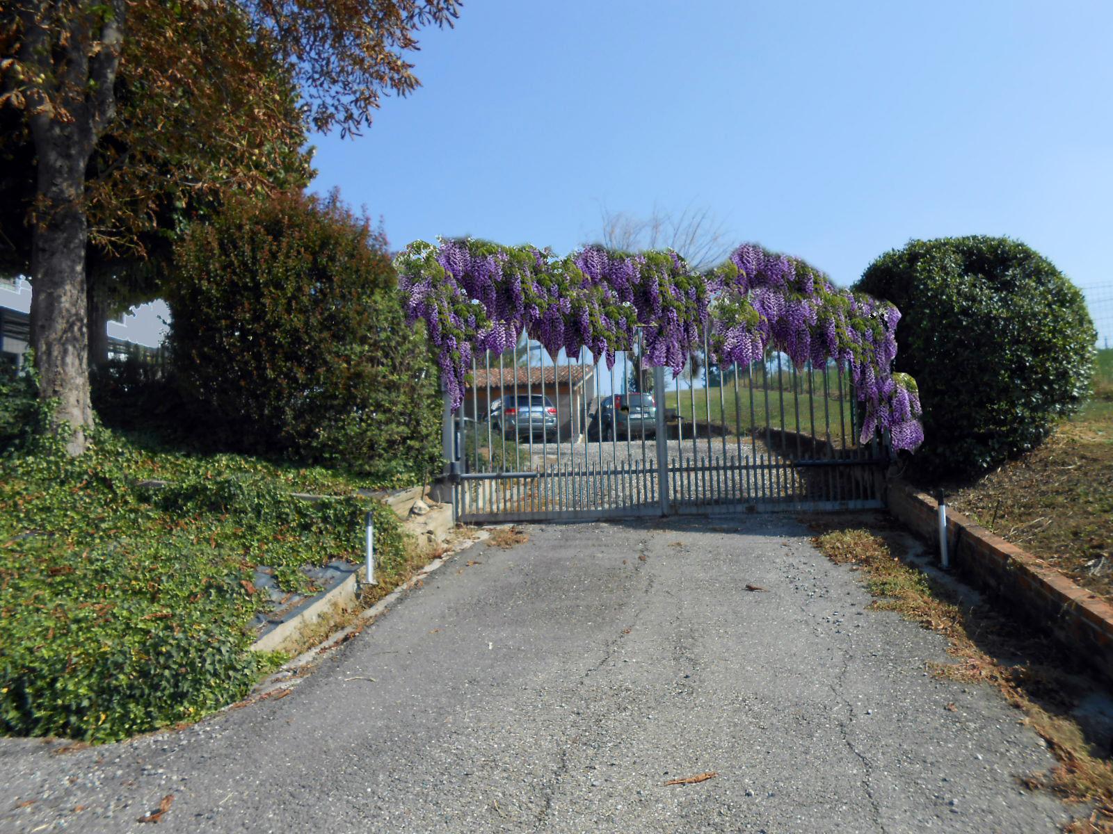 giardino privato progettazione spazi verdi energycare